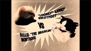 kittyfight.jpg